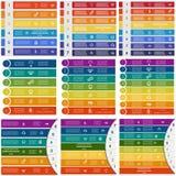 Infographicmalplaatjes op 6, 7, 8 posities Royalty-vrije Stock Afbeelding