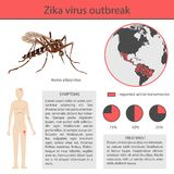 Infographics ιών Zika με τη μετάδοση, το σύμπτωμα, την πρόληψη και τη θεραπεία διάνυσμα inforgaphic Στοκ φωτογραφία με δικαίωμα ελεύθερης χρήσης