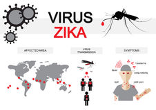 Infographics ιών Zika Στοκ Εικόνες