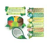 Infographics που διακοσμείται με τα φύλλα των δέντρων Στοκ Φωτογραφίες