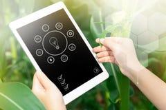 Infographics της Farmer που χρησιμοποιεί τον ψηφιακό υπολογιστή ταμπλετών στο cultivat στοκ εικόνες
