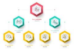 Infographics диаграммы organogram иерархии дела корпоративно иллюстрация штока