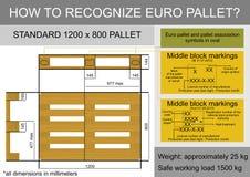 Infographics паллета евро иллюстрация штока