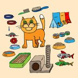 Infographics 家猫和所有是 免版税图库摄影