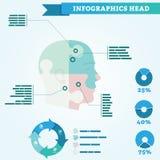 头Infographics :头被划分成四部分 库存图片