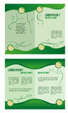 Infographics Στοκ Εικόνα