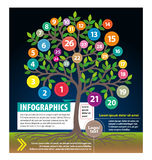 Infographics Royalty-vrije Stock Foto
