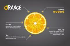 Infographics anaranjado Las frutas frescas de la fruta cítrica vector el ejemplo en fondo gris Imagen de archivo libre de regalías