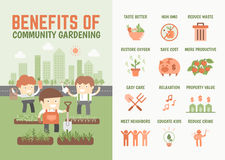 Infographics about benefits of community gardening vector illustration