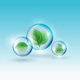 02 Infographics Bio Bubble. The illustration of a green leaf in a transparent bubble. Ecology Concept Royalty Free Stock Photos