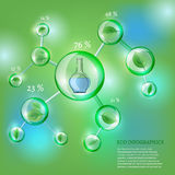 Infographics Bio Bubble. The illustration of bio infographics with green leaves in transparent bubbles. Ecology Concept Royalty Free Stock Photo