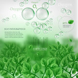 02 Infographics Bio Tree. The illustration of beautiful bio infographics with water cycle scheme. Ecology set with oxygen, water and carbon dioxyde molecules Royalty Free Stock Photo