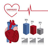 Infographics of cardiology design Royalty Free Stock Photo