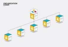 Infographics com árvore, fluxo do organograma do diagrama Vetor Fotos de Stock