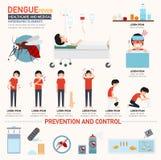 Infographics da febre de dengue ilustração do vetor