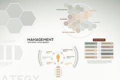 Infographics da gerência - ícones, gráficos, cartas Imagem de Stock