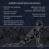 Infographics da pose da ioga, benefícios da prática Fotografia de Stock Royalty Free
