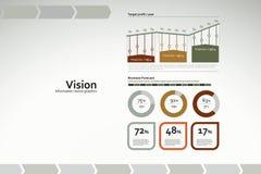 Infographics da visão com cartas e estatísticas Imagens de Stock Royalty Free