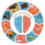 Infographics de Brain Foods Foto de archivo libre de regalías