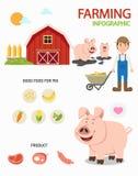 Infographics de ferme de porc, illustration illustration libre de droits