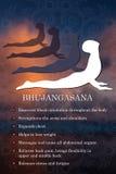 Infographics de la actitud de la yoga, ventajas de la práctica Imagen de archivo