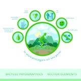 Infographics de la bicicleta, elementos del vector Fotografía de archivo