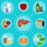 Infographics de la comida para el hígado sano Fotografía de archivo libre de regalías