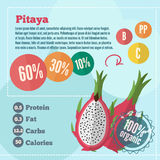 Infographics de las vitaminas de Pitaya en un estilo plano Imágenes de archivo libres de regalías
