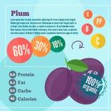Infographics de las vitaminas del ciruelo en un estilo plano Imágenes de archivo libres de regalías