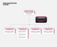 Infographics dell'organigramma con l'albero Illustrazione di vettore Fotografia Stock