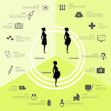 Infographics di nascita e di gravidanza, fasi di gravidanza Fotografie Stock Libere da Diritti