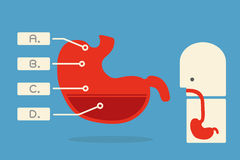 Infographics do estômago  Imagens de Stock