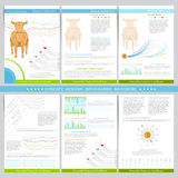 Infographics elements in flat concept stock exchange style. Use for marketing, flyer, corporate report, presentation Royalty Free Stock Images