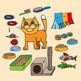 Infographics Hauskatzen und alles, das ist Lizenzfreie Stockfotografie