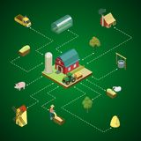 Infographics isometrico d'agricoltura naturale 3D Fotografia Stock