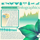 An infographics of a leaf Stock Photo