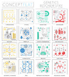 Infographics mini concept Genetics and biochemistry icons for web. Premium quality design web graphics icons elements. Genetics and biochemistry concepts Royalty Free Stock Image