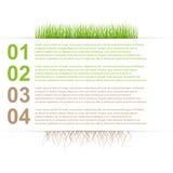 Infographics moderno del modello di progettazione della natura Fotografia Stock Libera da Diritti