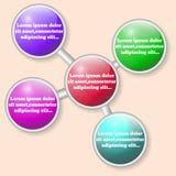 Infographics Mooie regeling van gekleurde cirkels Stock Afbeeldingen