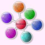 Infographics Mooie regeling van gekleurde cirkels Royalty-vrije Stock Foto's