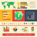 Infographics report cricket poster Royalty Free Stock Image