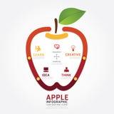 Infographics vector apple brain design diagram line style Stock Photography