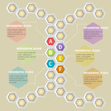Infographics. Vector infographic template. Vector design from six-sided honeycombs Stock Photo