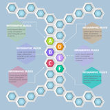 Infographics. Vector infographic template. Vector design from six-sided honeycombs Royalty Free Stock Photos