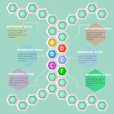 Infographics. Vector infographic template. Vector design from six-sided honeycombs Royalty Free Stock Images