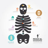 Infographics vector medical skull bone design diagram line style Royalty Free Stock Image