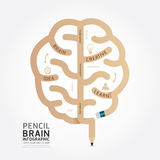 Infographics vector pencil brain design diagram line style. Royalty Free Stock Photo