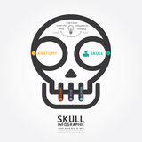 Infographics vector skull and brain design diagram line style Stock Images