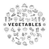 Infographics vegetal del círculo del icono Colección mega de símbolos aislados de las verduras stock de ilustración