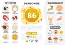 Infographics vitamin B6 royaltyfri illustrationer